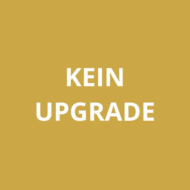 REALDOLL24-kein-Upgrade